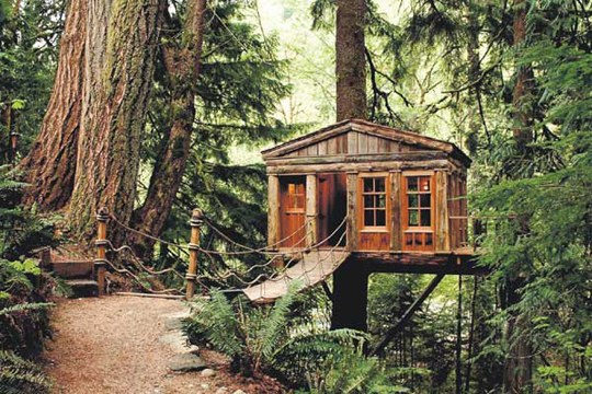 Tree Houses For Your Spouses | Hommemaker