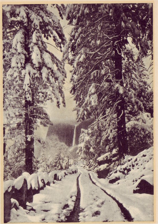 wawona_road_winter