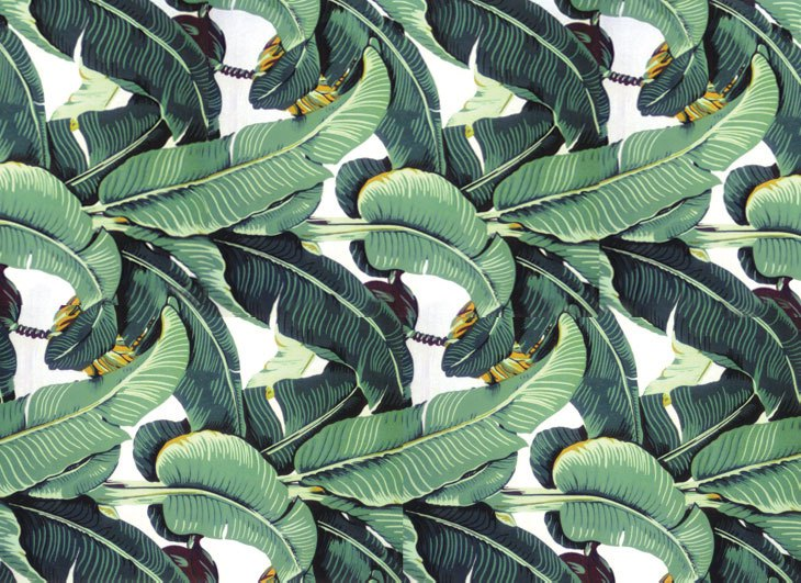 Banana Leaf Wallpaper Don Loper