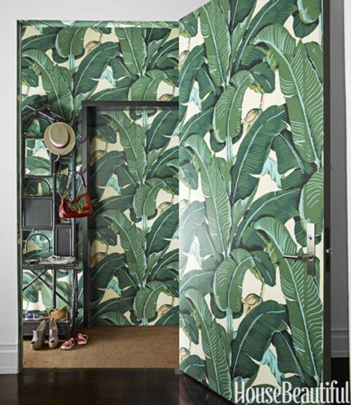 palm-tree-wallpaper-4