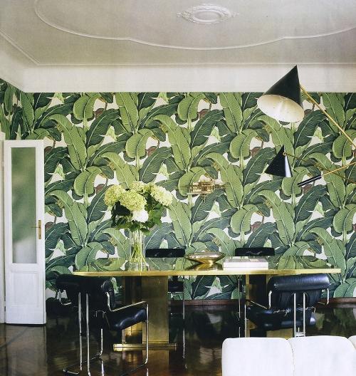 palm-wallpaper