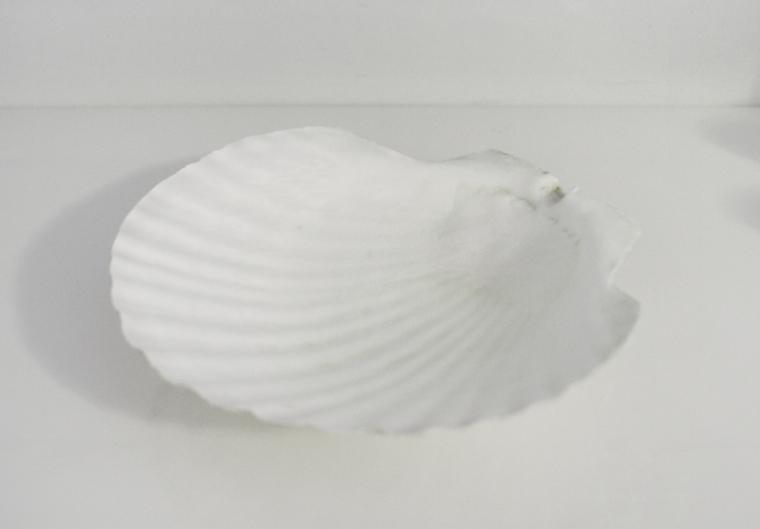 white-dish-14
